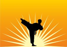 Karate Royalty Free Stock Photography