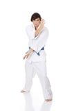 Karate. Royalty Free Stock Photo