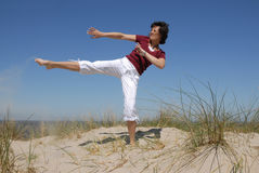 Karate Royalty Free Stock Images