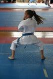 Karate stock afbeeldingen