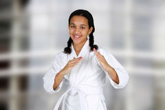 Karate fotografia royalty free