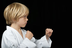 Karate Fotografia Stock