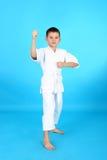 Karate Lizenzfreie Stockfotografie