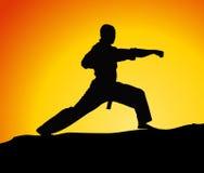 Karate Stockfoto