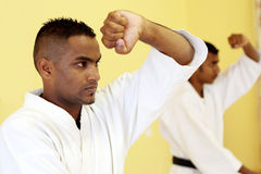 Karate Royalty Free Stock Image