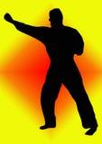 Karate Stock Afbeelding