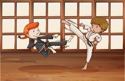 karate ilustración del vector