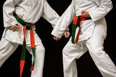 karate Arkivbilder