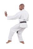 Karate fotografía de archivo