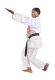 Karate Stock Image
