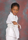 Karate stockbild