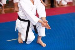 karate lizenzfreie stockfotos