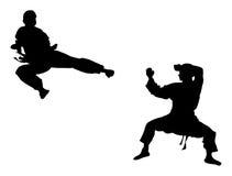 Karate Foto de archivo libre de regalías
