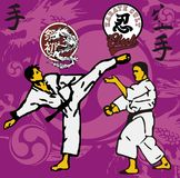 Karate area Stock Images
