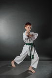 Karate in the attack Royalty Free Stock Photo
