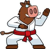 Karate Boar Royalty Free Stock Images