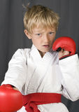 Karate boy Stock Images