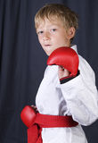 Karate boy Stock Photography
