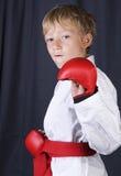 Karate boy Stock Photography