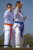 Karate boys demonstration Royalty Free Stock Photo