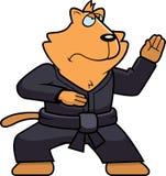 Karate Cat Stock Image
