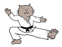 Karate cat. Creative draw of karate cat Stock Photo