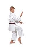 Karate chłopiec pozować Zdjęcia Stock
