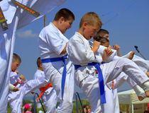 Karate  club children Stock Images