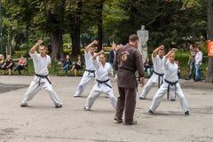 Karate de Shotokan Imágenes de archivo libres de regalías