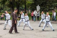 Karate de Shotokan Fotos de archivo