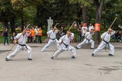Karate de Shotokan Imagen de archivo libre de regalías