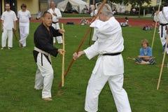 Karate del arma con BO (=Stick) Imagen de archivo