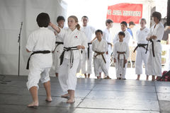 Karate Demonstration Royalty Free Stock Image