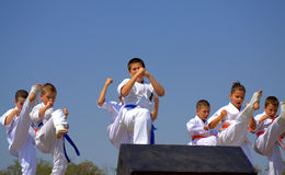 Karate Demonstration Royalty Free Stock Photo