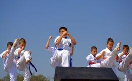 Karate Demonstration Royalty Free Stock Photo