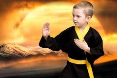 Karate des kleinen Jungen zeigt Kampfkunsttechniken auf dem Hintergrund eines Sonnenuntergangs in den Bergen Ausbildung in den Be stockbilder