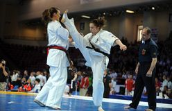 Karate European Championship Stock Images