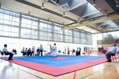 Karate EUROPOLYB 2010 royalty free stock image