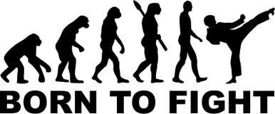 Karate ewolucja urodzona walczyć royalty ilustracja