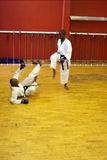 Karate fight stock photography