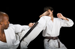 Karate Fight Royalty Free Stock Photography