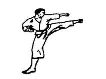 Karate fighter stock image