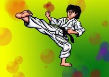Karate Fighter 7 Black Belt (2014) Stock Images