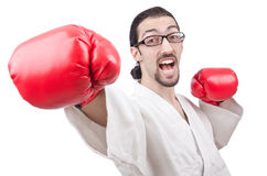Karate fighter isolated Royalty Free Stock Photography