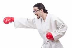 Karate fighter isolated on  white Royalty Free Stock Photos