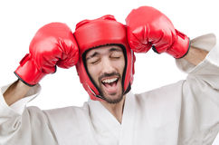 Karate fighter isolated on  white Royalty Free Stock Image