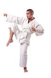 Karate fighter isolated on the white Stock Image