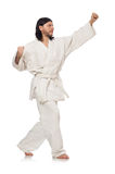 Karate fighter on white Stock Photography