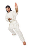 Karate fighter on white Royalty Free Stock Photography