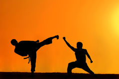 Karate fighters Stock Images